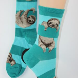 hangende luiaard of sloth