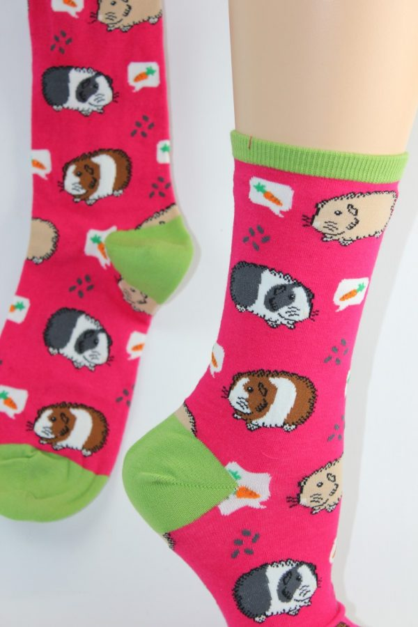 Cavia sokken lief hè
